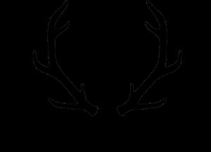 Dry Farm Wines Logo