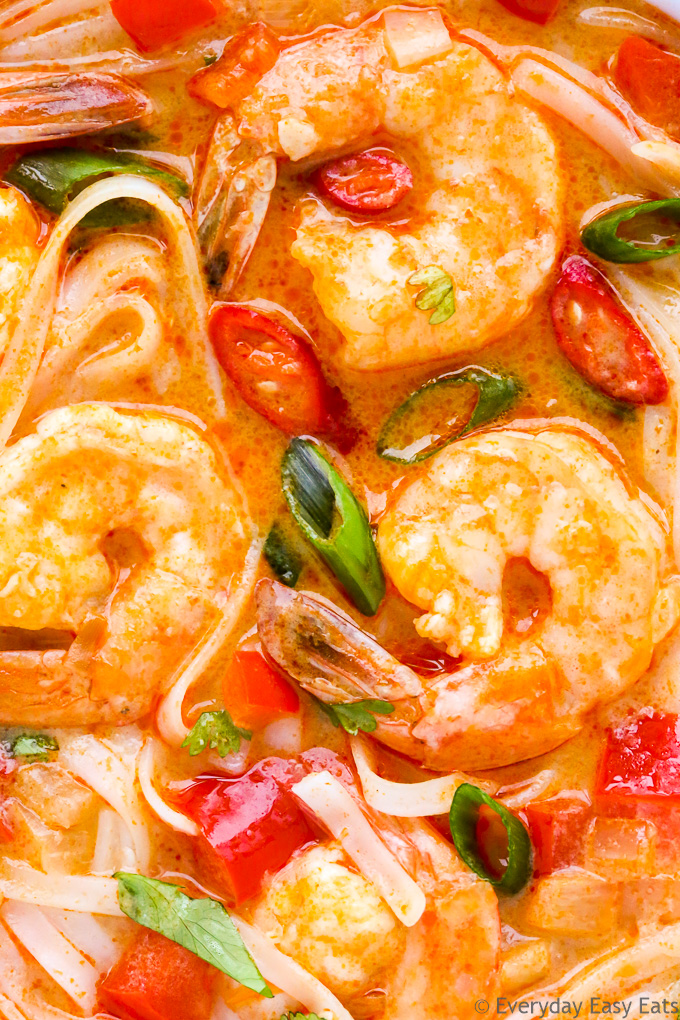 Close-up overhead view of Thai Spicy Shrimp Noodle Soup.