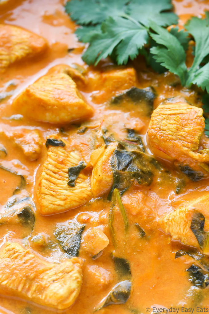 Close-up overhead view of Indian Coconut Chicken Curry to to show texture.